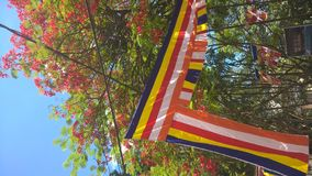 Buddhist flag during the festive season. Buddhist flag hung amidst flowering plants during the Wesak season Stock Photography