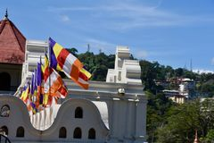 Buddhist flags outside Temple of Sacred Tooth Relic Stock Images