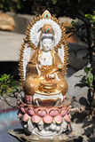 Buddhist goddes statue. At Ten Thousand Buddhas Monastery in Hong Kong Stock Images