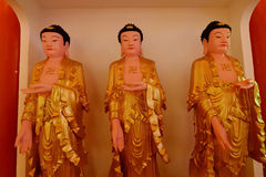 Buddhist Royalty Free Stock Images