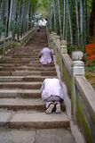 Buddhist koutou on stone step. Buddhist koutou(wirship on bended knees) on stone step Stock Photo