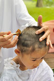 Buddhist little girl be removed hair to become a nun during a Bu Stock Image