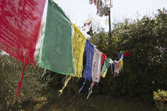 Buddhist monastery flags Stock Image