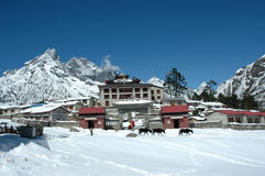 Buddhist monastery in the Himalayas Stock Photography