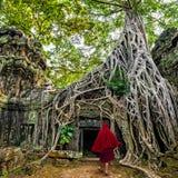 Buddhist monk at Angkor Wat. Siem Reap, Cambodia. Buddhist monk at Angkor Wat. Ancient Khmer architecture, Ta Prohm temple ruins hidden in jungles. Popular Stock Photos