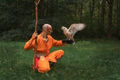Buddhist monk with a bird on his hand in the forest stock images
