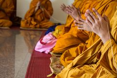 Buddhist monk are chanting in temple. Press the hands together at the chest in sign of respect royalty free stock photos