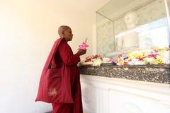 A Buddhist monk at Kelaniya Raja Maha Vihara Stock Photos