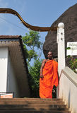 Buddhist monk at a monastery Stock Photography