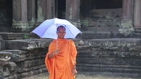 Buddhist monk in orange clothes with blue umbrella in Angkor Thom temple complex. CAMBODIA, SIEM REAP, APRIL 3, 2014: Buddhist monk in orange clothes with blue stock video