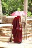 Buddhist monk with purple cloth Royalty Free Stock Photography