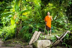 Buddhist monk in rainforest Royalty Free Stock Image