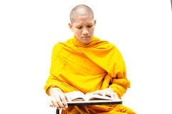 Buddhist monk reading a religious text. Stock Image