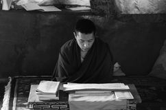 A Buddhist Monk reading scriptures royalty free stock image
