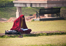 Buddhist monk studies at the ruins near the Dhamekh Stupa. Stock Images