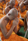 Buddhist Monk In Thailand royalty free stock photo
