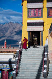 Buddhist monk from Thiksey monastery. India Royalty Free Stock Photography