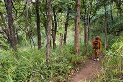 Buddhist monk trekking Stock Photography