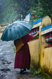 Buddhist monk with umbrella in McLeod Ganj Royalty Free Stock Photography