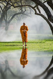 Buddhist monk walk receive food in the morning Stock Photo