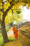 Buddhist Monk walking for receive food Royalty Free Stock Photography