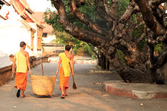 Buddhist Monk Yard Work Stock Photo
