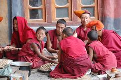 Buddhist monks. Are preparing barley dumplings in the monastery of Pukhtal in the Indian Himalaya Royalty Free Stock Photo