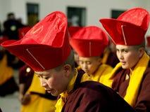 Buddhist Monks. Performing their rituals during a program in Seto Gumba (Druk Amitabh Mountain)i.e. White Monastery in Kathmandu Nepal royalty free stock photo