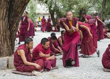 Buddhist monks` debating practice ,one monk is clapping , Sera monastery , Lhasa , Tibet royalty free stock photos