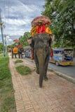 Buddhist monks on an elephant Stock Photography