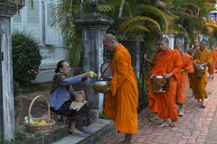 Buddhist monks getting alms. Food is given to Buddhist monks in the streets of Luang Prabang in Laos during an alms round early in the morning Royalty Free Stock Images