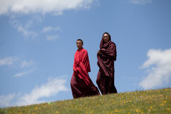 Buddhist monks in grass covered hills Royalty Free Stock Image