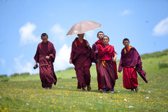 Buddhist monks in grass covered hills Royalty Free Stock Photo