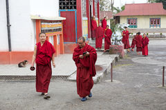 Buddhist monks at the Phodong Monastery, Gangtok, Sikkim, India Royalty Free Stock Images