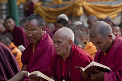 Buddhist Monks Praying Stock Photos