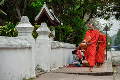 Buddhist monks daily ritual of collecting alms and offerings Royalty Free Stock Image