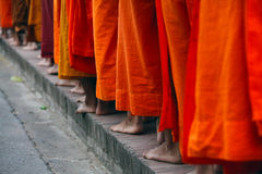 Buddhist monks. Walking together in early morning Stock Images