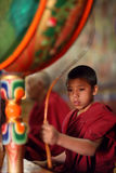 Buddhist novice, Ladakh Stock Photography