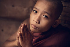 Buddhist novice monk praying in monastery stock photography
