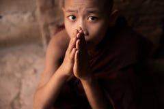 Buddhist novice monks praying Stock Photos