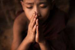 Buddhist novice monks praying in temple royalty free stock images