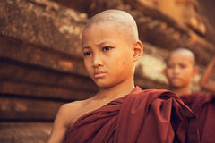 Buddhist novice monks walking morning alms Royalty Free Stock Image