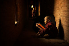 Buddhist novice reading royalty free stock photos