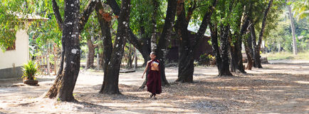 Buddhist novice walking go to Tai Ta Ya Monastery or Sao Roi Ton Temple Stock Photo