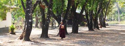 Buddhist novice walking go to Tai Ta Ya Monastery or Sao Roi Ton Temple Stock Photo