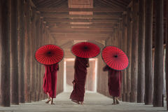 Buddhist novice are walking in temple. Myanmar stock photos