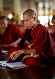 Buddhist novice in Yangon. Burmese Buddhist novice studying Pali at a aschool in Yangon, Myanmar Stock Image