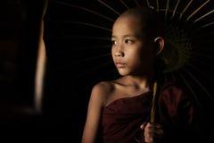 Buddhist novices holding umbrella stock images