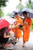 Buddhist novices walk to collect alms Stock Images