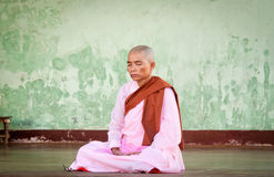 Buddhist nun Stock Image